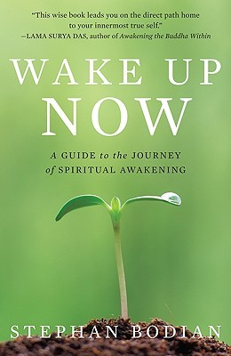 Wake Up Now: A Guide to the Journey of Spiritual Awakening