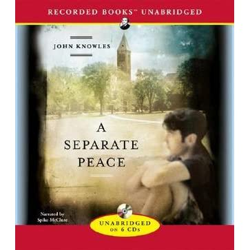 a seperate peace essays