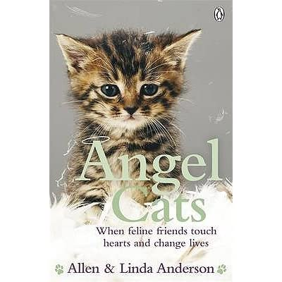 Amelia (The United Kingdom)'s review of Angel Cats: When