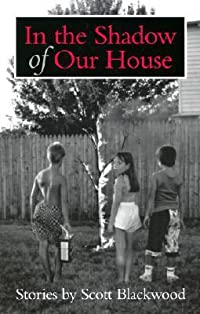 In the Shadow of Our House: Stories