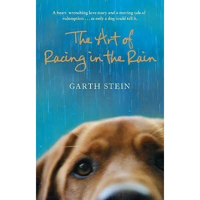 the resilience of denny in the novel the art of racing in the rain by garth stein The art of racing in the rain by  the new york times bestselling novel from garth stein-a heart-wrenching but deeply funny and ultimately  denny swift, an up.