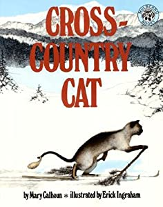 Cross-Country Cat