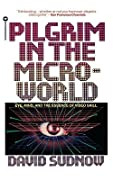 Pilgrim in the Microworld