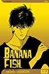 Banana Fish, Vol. 17