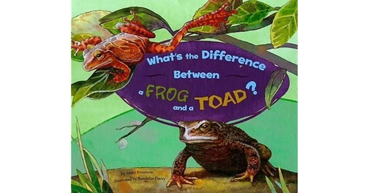 Whats The Difference Between A Frog And A Toad By Mary Firestone