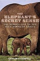 Elephants Secret Sense