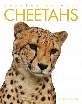 Cheetahs (Amazing Animals)