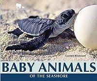 Baby Animals of the Seashore