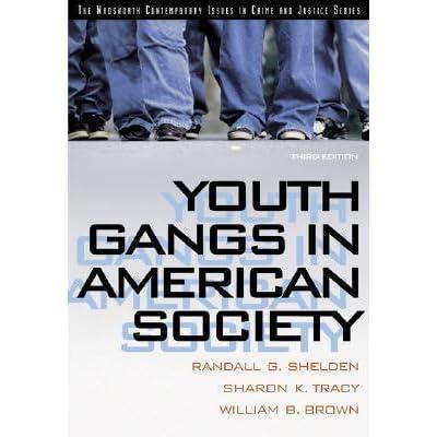violence american society essay