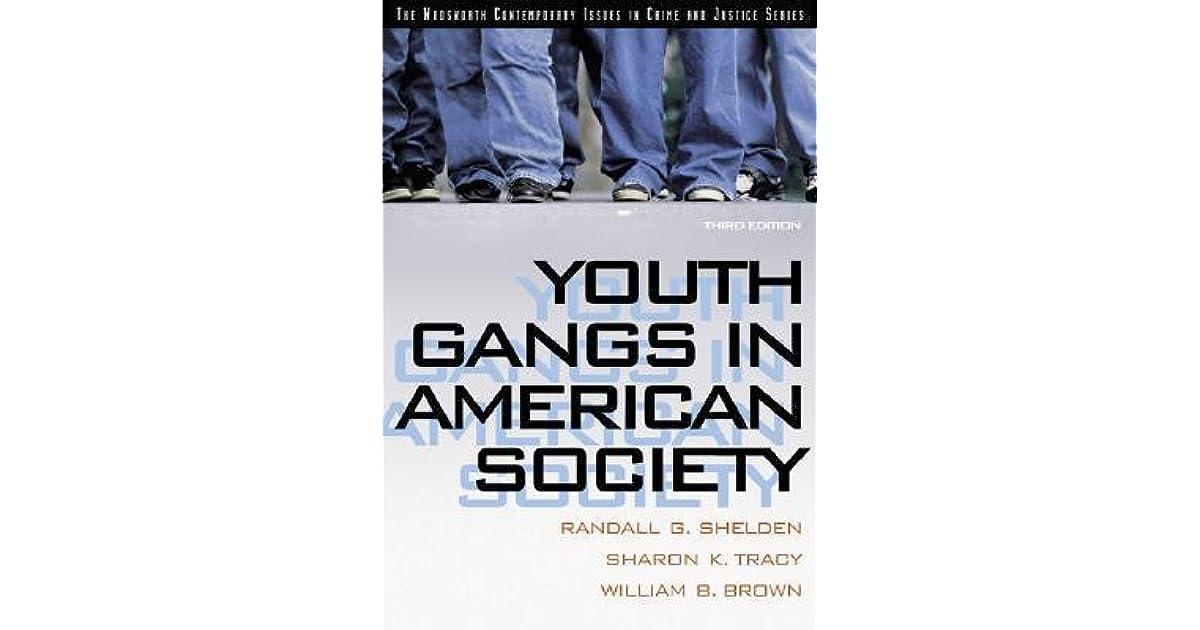 Youth Gangs in American Society by Randall G. Sheldon