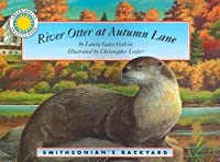 River Otter at Autumn Lane