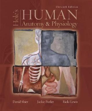 Hole's Human Anatomy & Physiology by David N  Shier