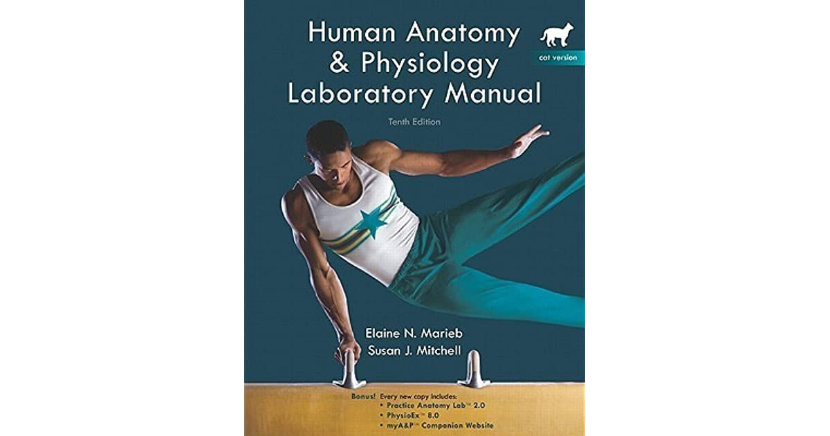 Human Anatomy Physiology Labobatory Manual Cat Version With