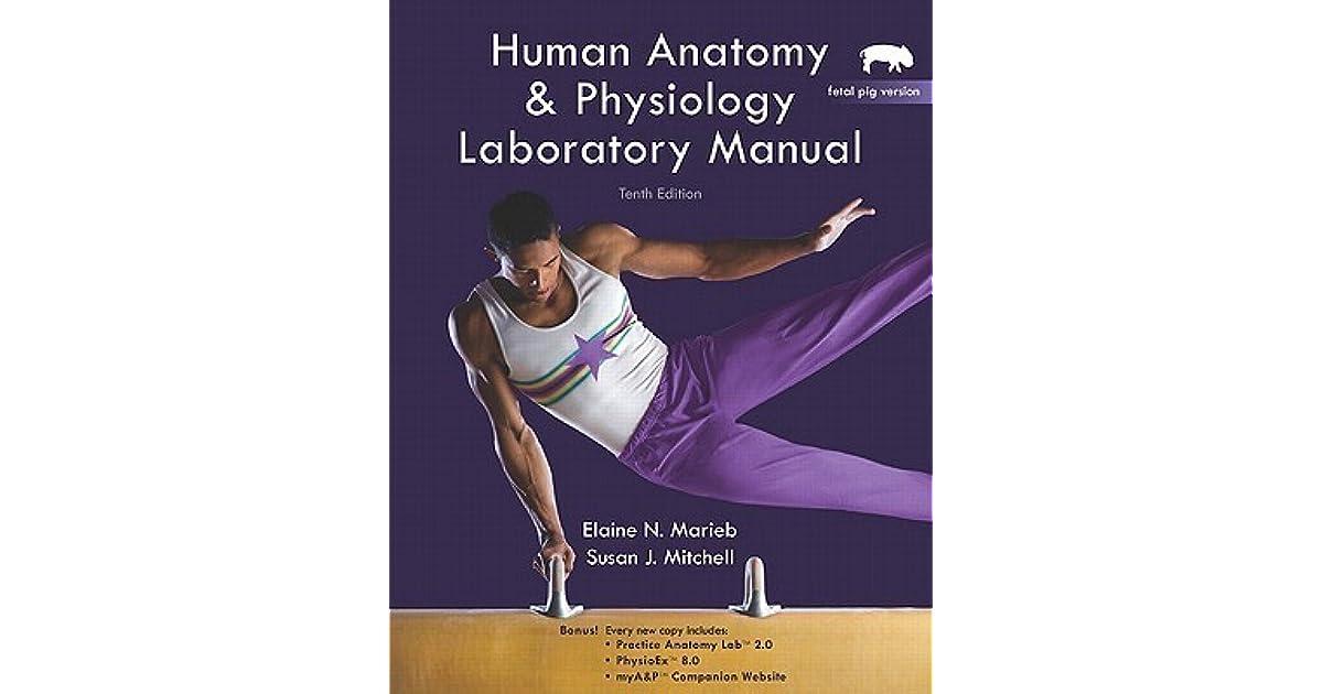 Human Anatomy & Physiology: Fetal Pig Version by Elaine N. Marieb