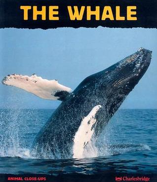 The Whale: Giant of the Ocean