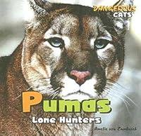 Pumas: Lone Hunters
