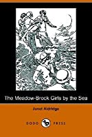 The Meadow-Brook Girls by the Sea, or the Loss of the Lonesome Bar