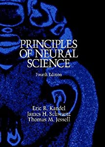 Principles of Neural Science