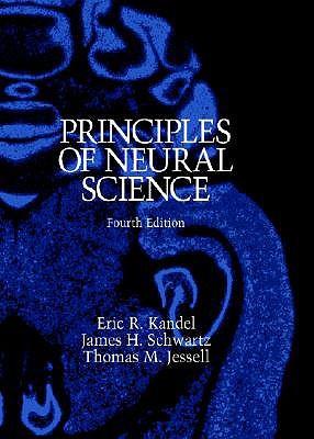 'Principles