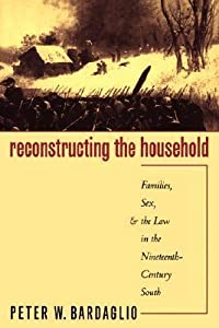 Reconstructing the Household: Families, Sex, and the Law in the Nineteenth-Century South