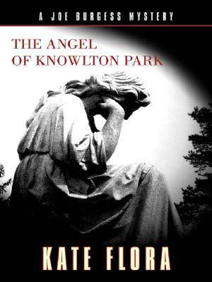 The Angel of Knowlton Park (Joe Burgess, #2)