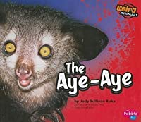 The Aye-Aye