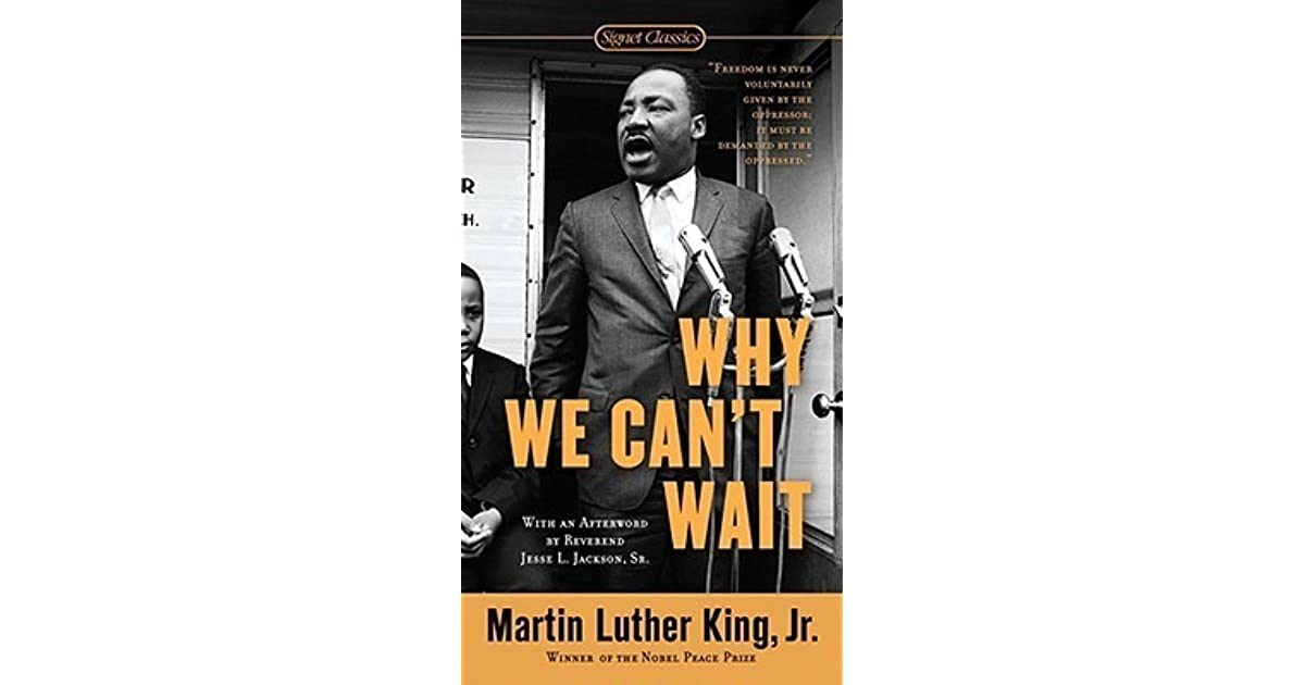 martin luther king jr the ways of meeting oppression essay