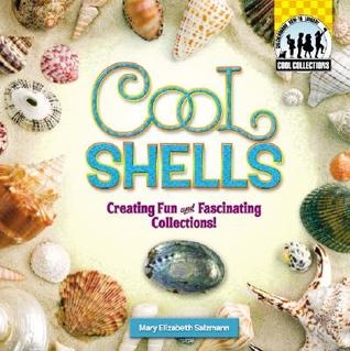 Cool Shells: Creating Fun and Fascinating Collections!