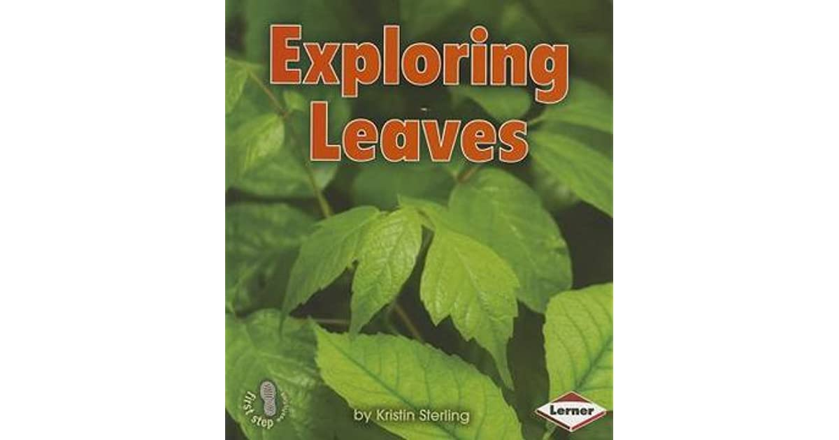 Exploring Seeds (First Step Nonfiction — Lets Look at Plants)