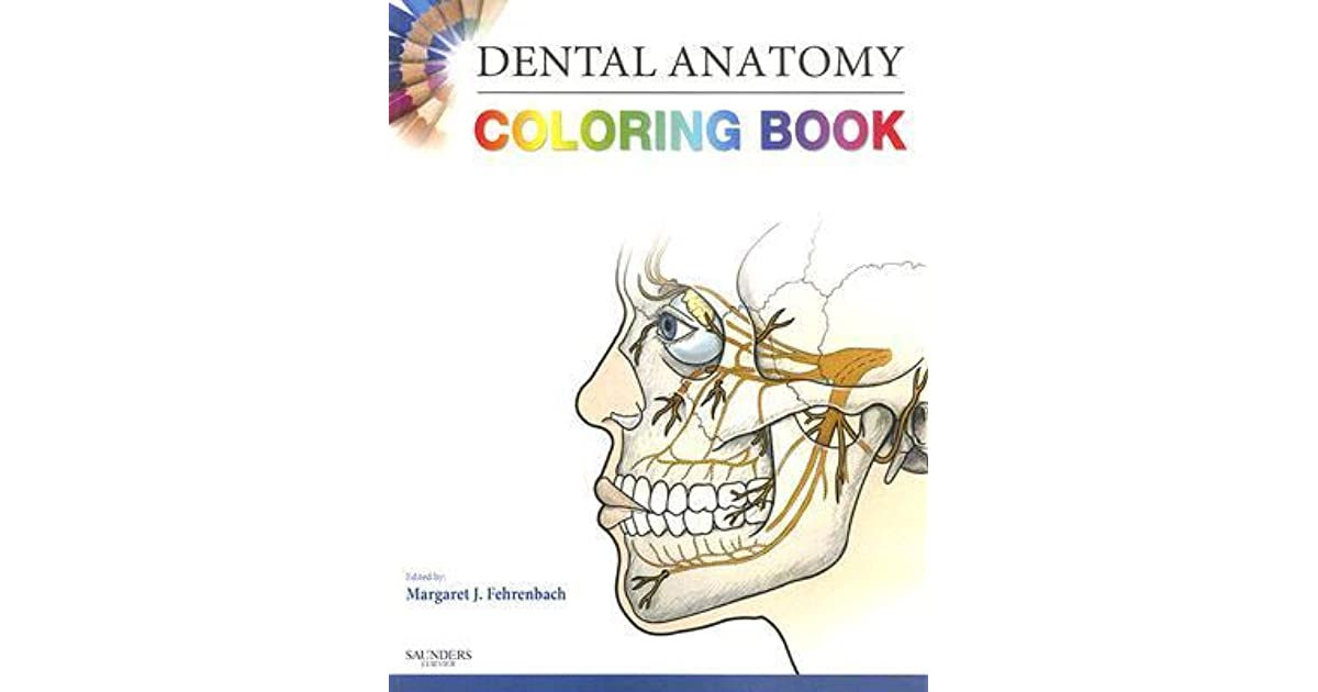 Dental Anatomy Coloring Book by Margaret J. Fehrenbach