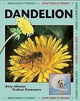 Dandelion. Jinny Johnson