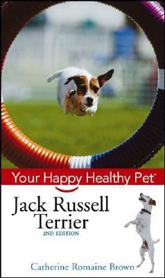 Jack Russell Terrier Your healthy pet