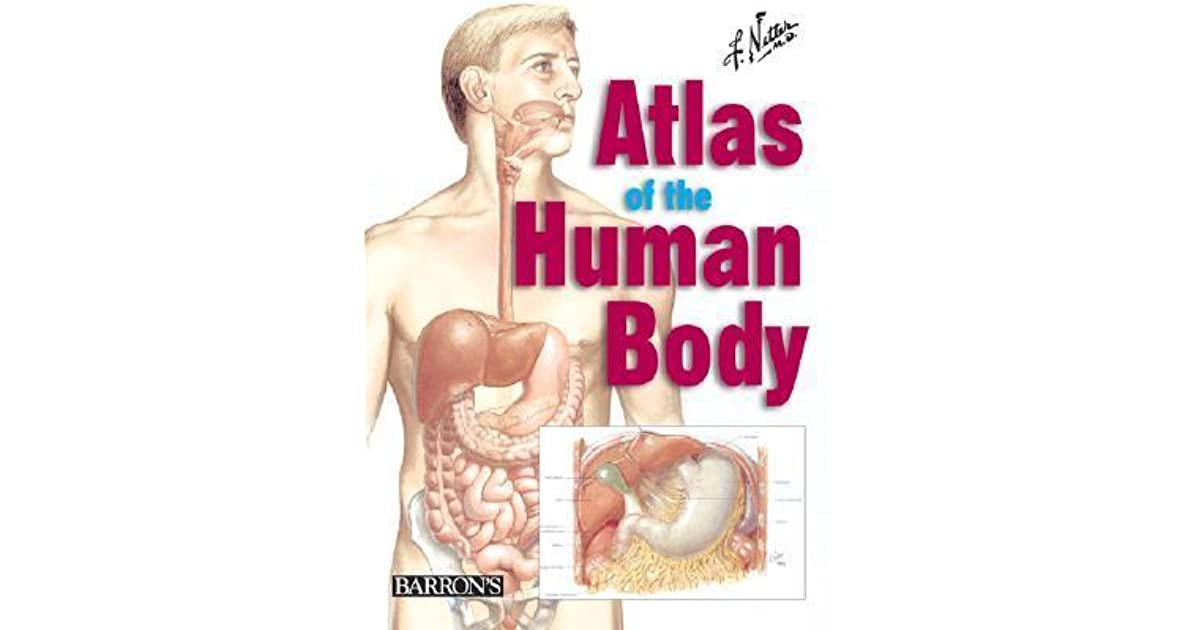 Netters Atlas Of The Human Body By Frank H Netter