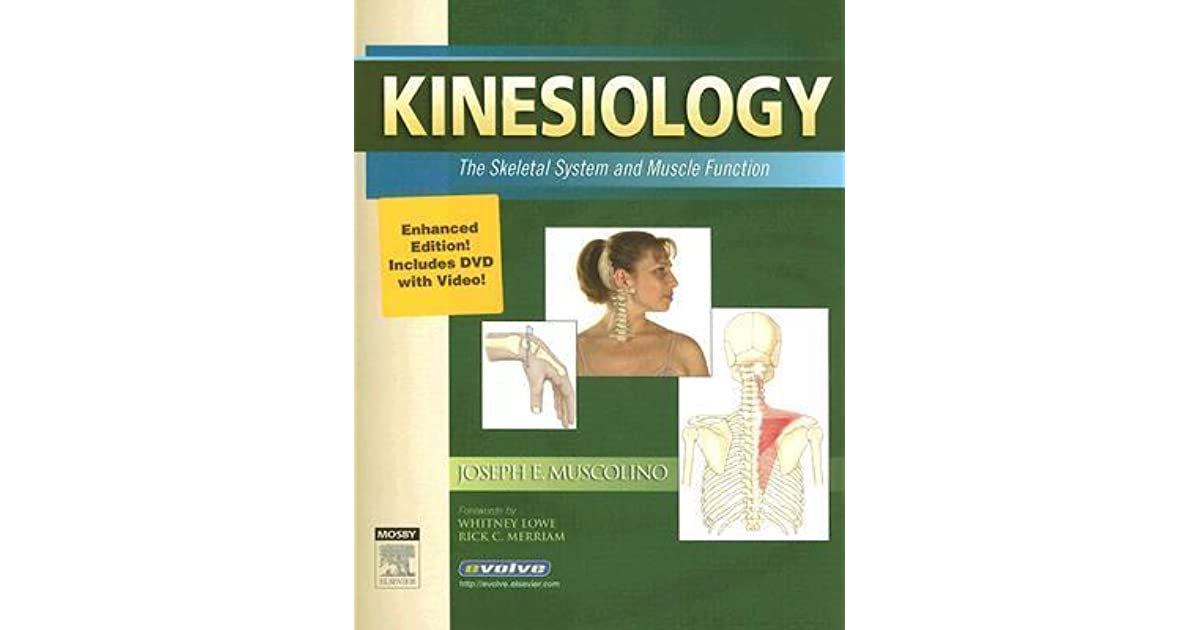 Kinesiology: The Skeletal System and Muscle Function [With DVD] by ...