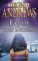 Eye of the Storm (Hudson, #3)