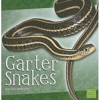 Garter Snakes by Van Wallach