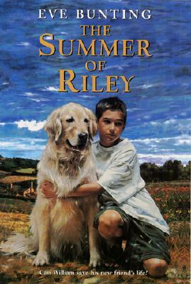 The Summer of Riley  pdf