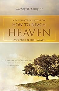 A Different Perspective on How to Reach Heaven: You Must Be Born Again