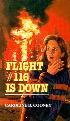 flight 116 spirit