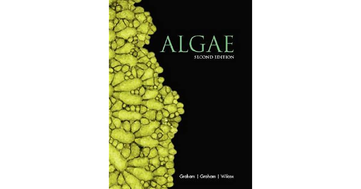 Algae by linda e graham fandeluxe