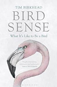 Bird Sense: What It's Like to Be a Bird