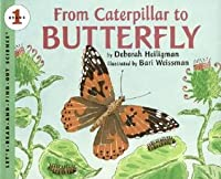 From Caterpillar to Butterfly Big Book