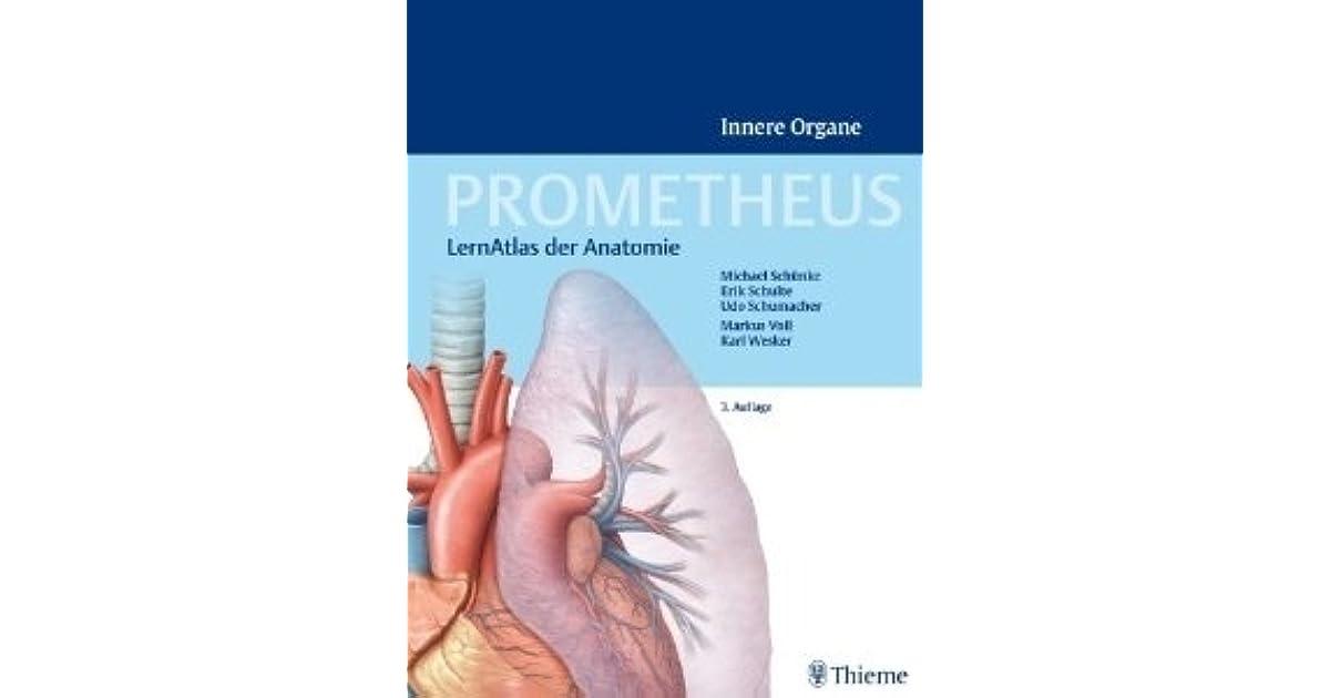 Beste Organe Anatomie Bilder - Anatomie Ideen - finotti.info