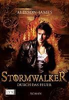 Durch das Feuer (Stormwalker, #2)