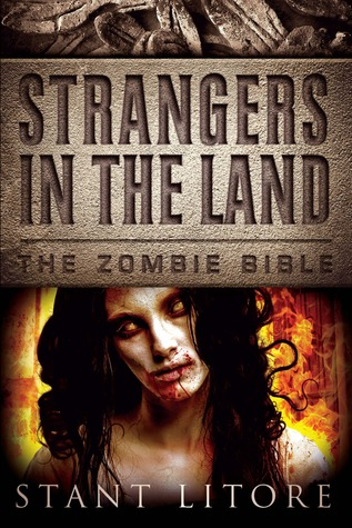 Strangers in the Land by Stant Litore