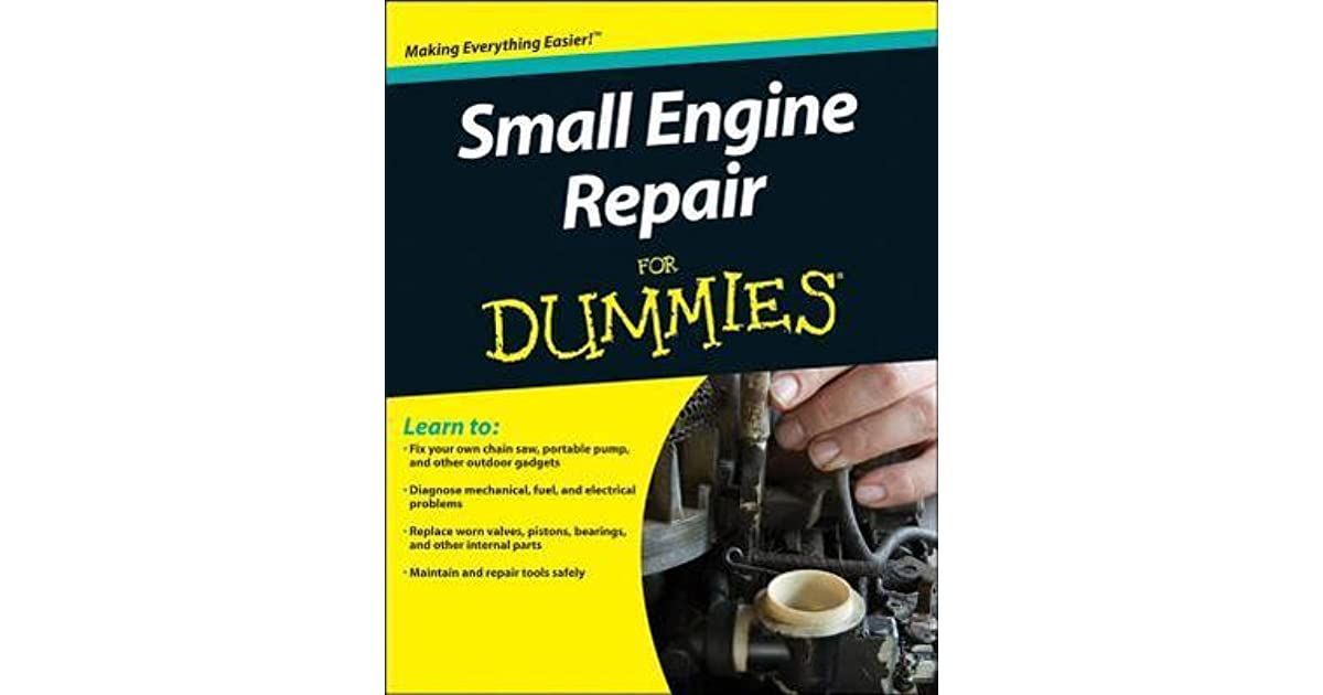 Small Engine Repair for Dummies by Consumer Dummies
