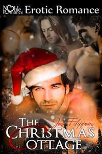 The Christmas Cottage.The Christmas Cottage By Joe Filippone