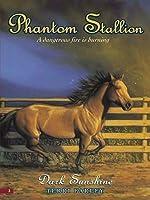 Dark Sunshine (Phantom Stallion, #3)