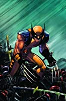 Wolverine Enemy of the State