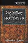 Gods Way of Holiness: Finding True Holiness Through True Peace